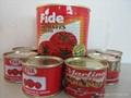 番茄酱罐头210克 4