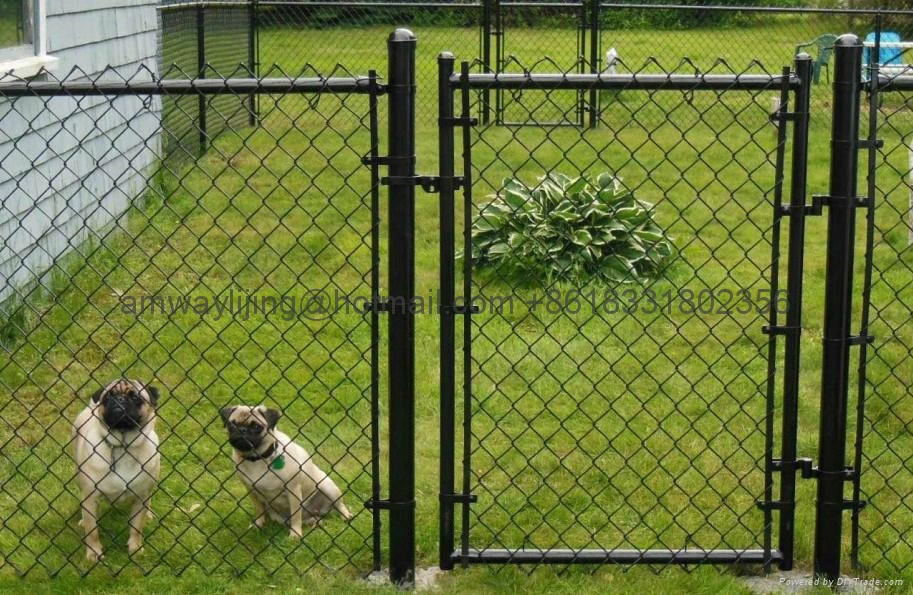 6\'x10\' chain link fence panels For dog kennels - Product Catalog -