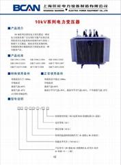 10kV系列電力變壓器
