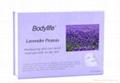 Lavender Protein Moisturizing Skin Care