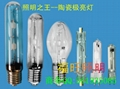 250w Single Ended Ceramic Metal Halide