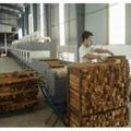 隧道式微波木材烘干防霉机 2