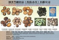 dried mushroom,black fungus,canned mushroom,canned fruits