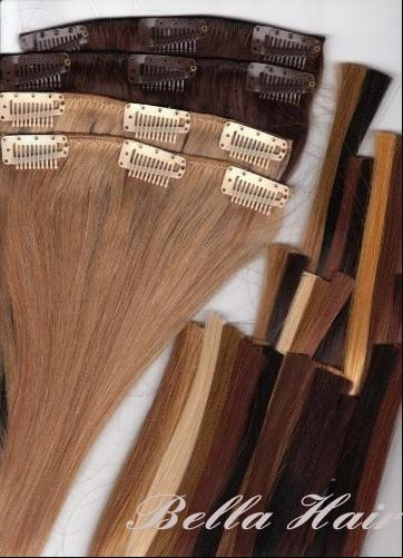 Clip in Full Head Set Chinese and Indian Human Hair Extensions 2