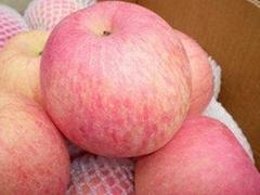 紅富士優質蘋果