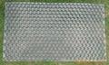 虎林秧盤現貨供應 2