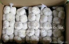 Garlic 250g 500g 1000g
