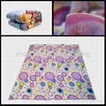 Micro coral fleece blanket