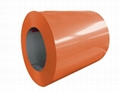 Pre-Painted Ga  anized Steel Coil