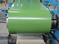 Pre-Painted Ga  anized Steel Coil 2