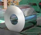 Hot-dipped Ga  anized Steel Coil 4