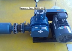 roots pump