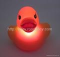 发光浴室鸭