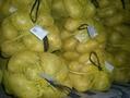 yellow potato 5