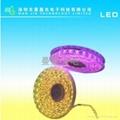 SMD5050led燈帶