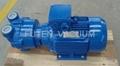 water ring vacuum pump 3