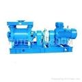 water ring vacuum pump 4