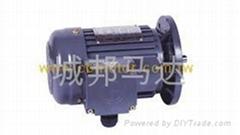 城邦立式IEC三相铝框(刹车)马达