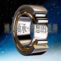 深圳SKF進口軸承