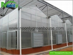 Venlo Polycarbonate (PC) Greenhouse