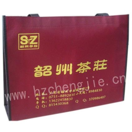 上海无纺布手提袋 2