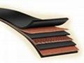 Fabric Conveyor Belt 1