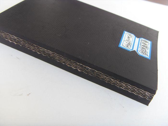 Fabric Conveyor Belt 2