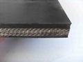 Fabric Conveyor Belt 3