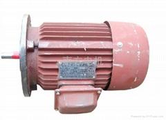 摆线针轮减速机专用电机