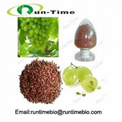 Grape Seed Extract with
