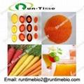 Food additive beta carotene