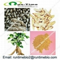 Pueraria extract with puerarin 40%