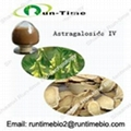 Astragalus root extract with