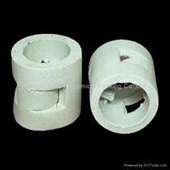 ceramic pall ring tower packing