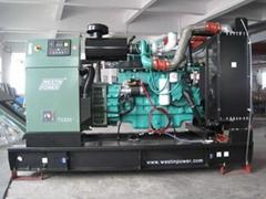 Diesel generating set(TC220)