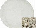 Garlic extract: Garlic Polysaccharide