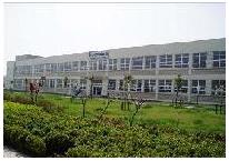 上海仙視電子有限公司