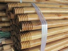 Varnished Wooden Mop / Broom Rods handle