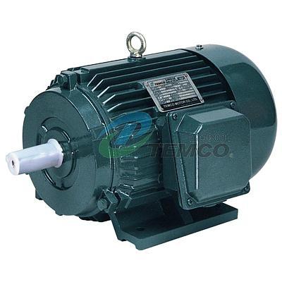 Y Series Three Phase Electric Motor