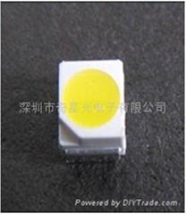 LED3528灯珠