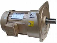 TCV立式减速电机