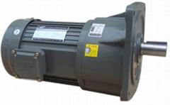TCG铸铁立式减速电机