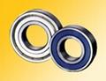 deep groove ball bearings(6200 series)