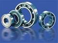 Non-standerd bearings Series