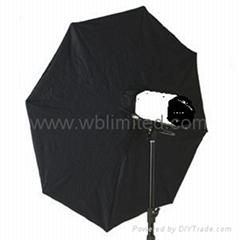 Umbrella softbox