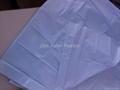 Plain sheet 4