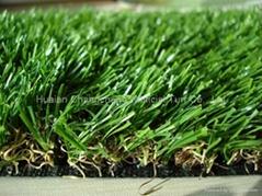 GW253816-7 Leisure Grass