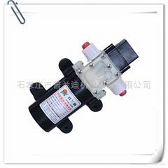 普蘭迪壓力開關式微型水泵