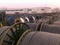供应防水橡套电缆 3