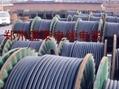 供应防水橡套电缆 4